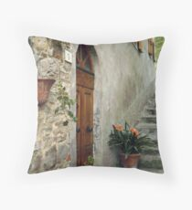 Entrance to Elementary School in Gressa Throw Pillow