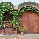 Decorated Gate and Window by Yair Karelic