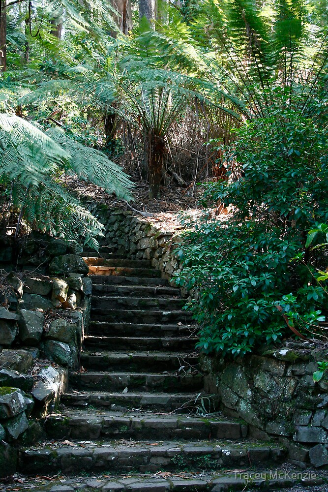 This way to the secret garden by Tracey McKenzie