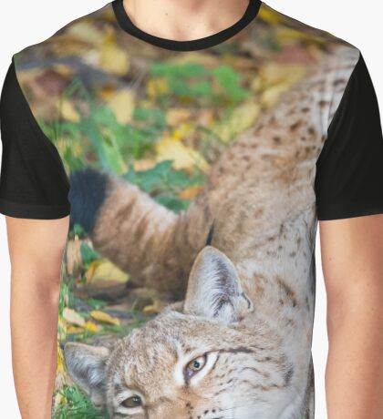 Playful Lynx Graphic T-Shirt