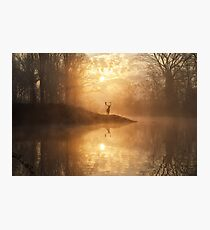 The hidden realm Photographic Print