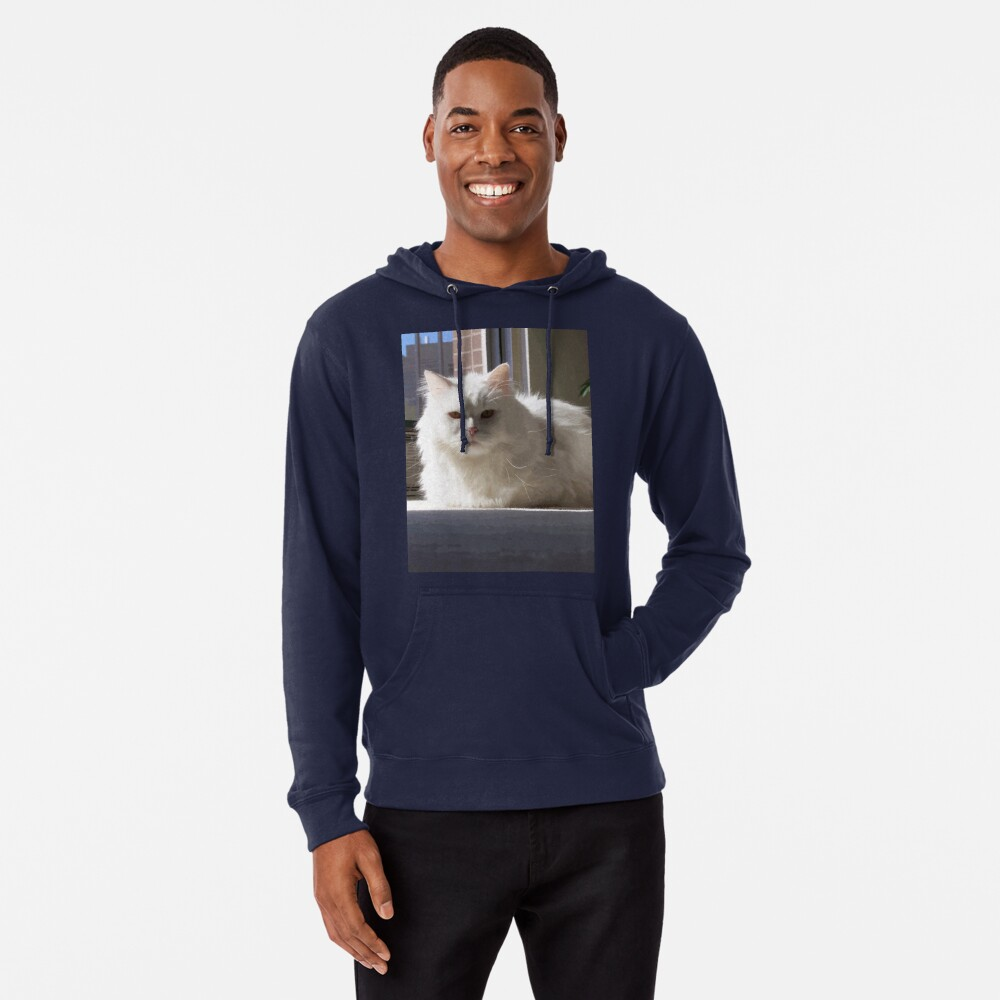 Cat In The House Lightweight Hoodie