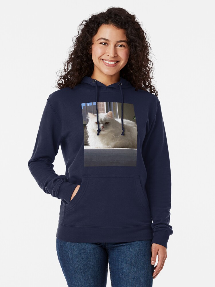 Alternate view of Cat In The House Lightweight Hoodie