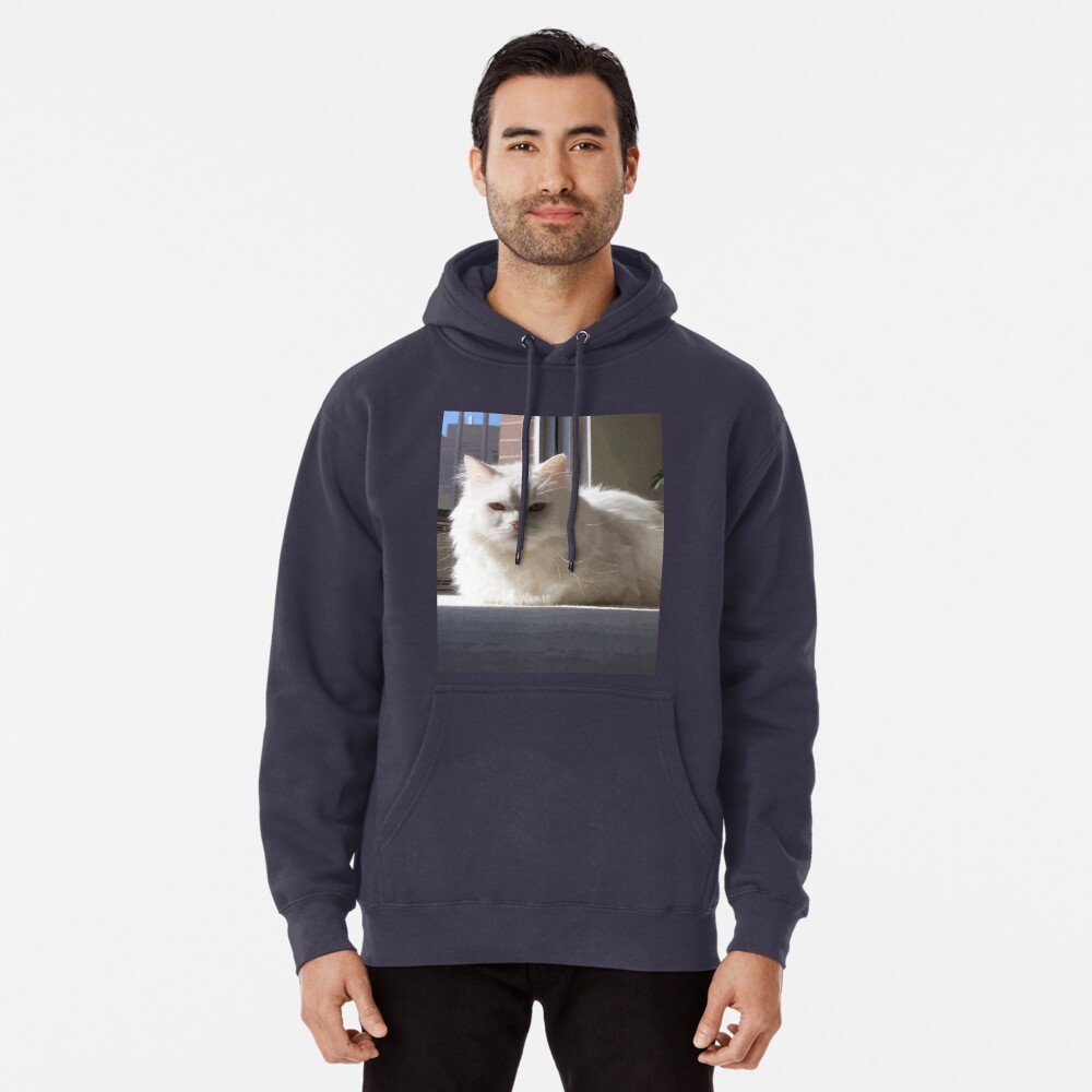 Cat In The House Pullover Hoodie