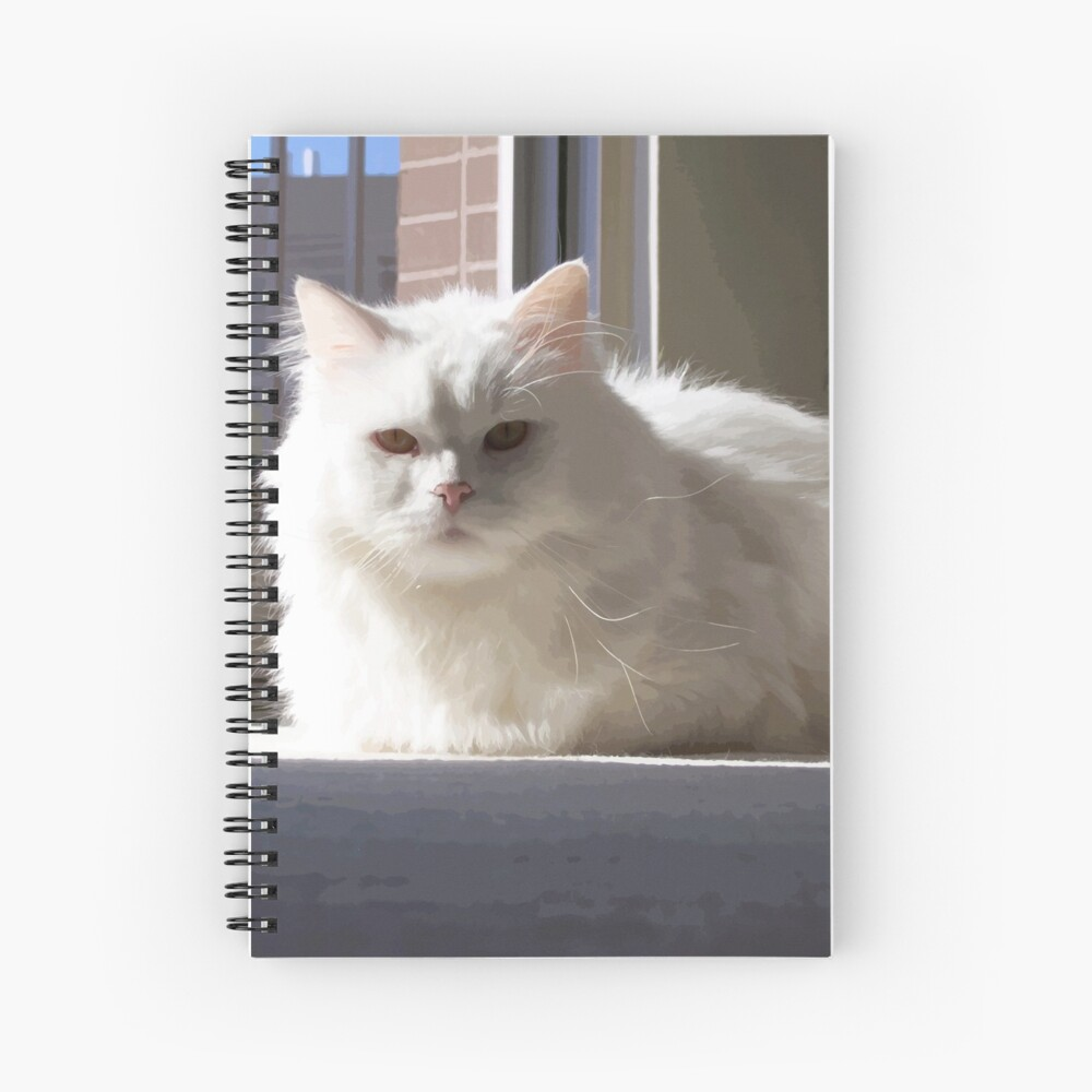 Cat In The House Spiral Notebook