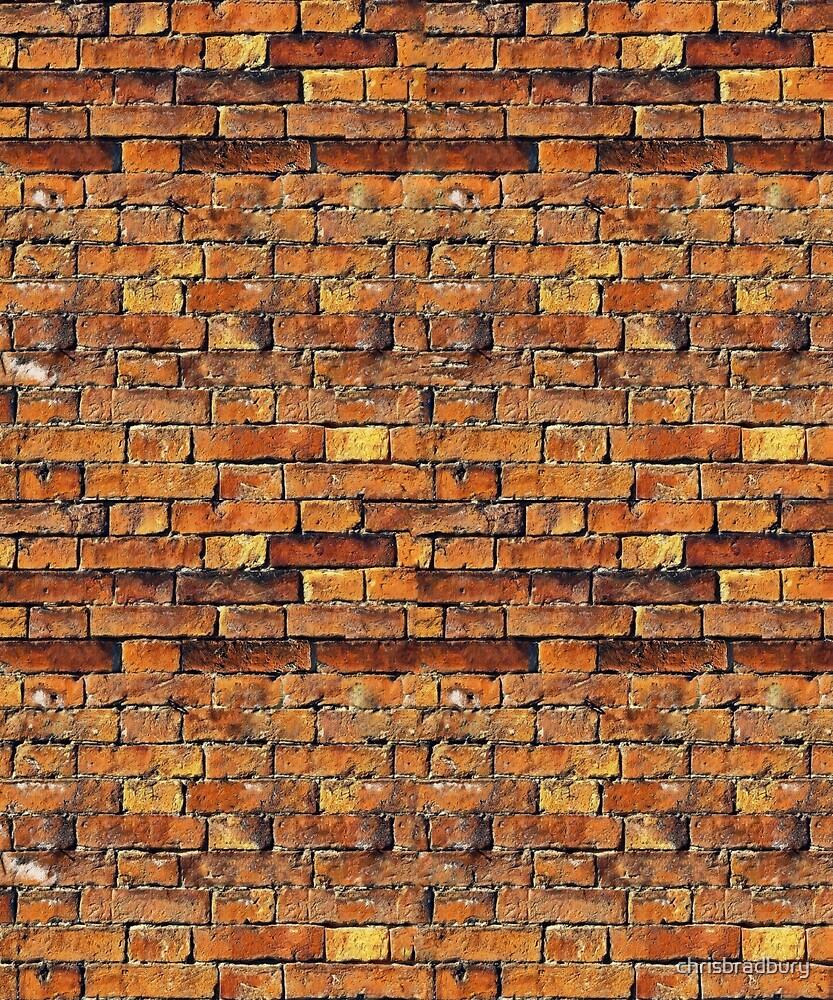 Bricks by chrisbradbury