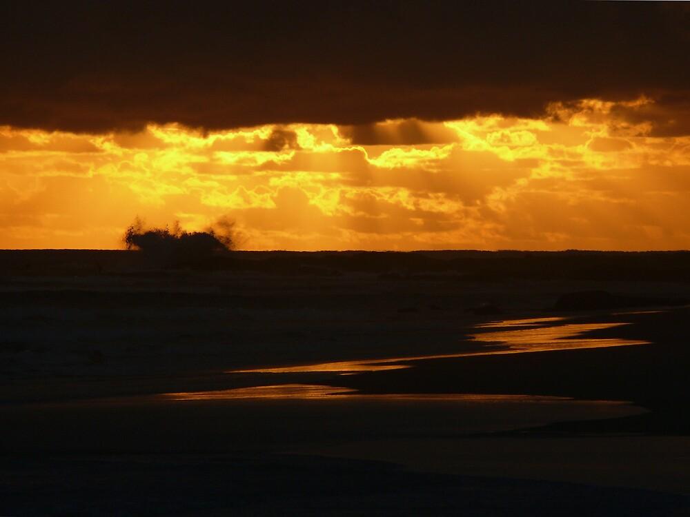 Morning Wave by Tim Everding