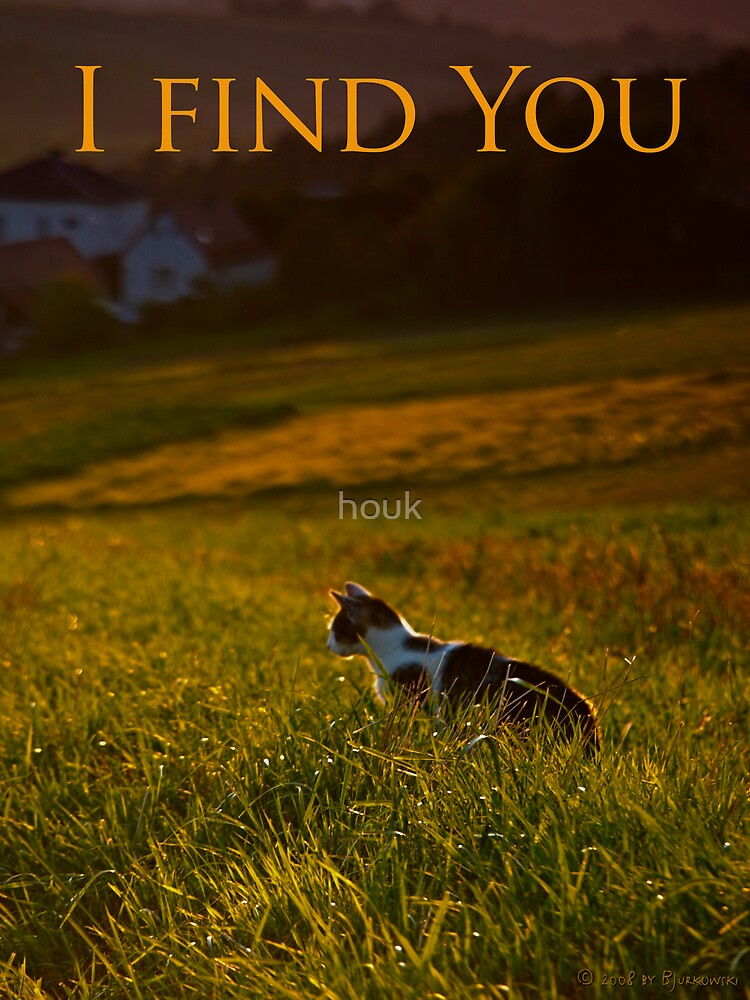 I find You by houk