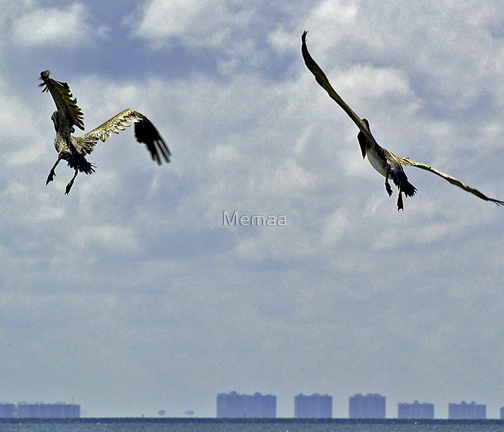 Pelicans on the Horizon by Memaa