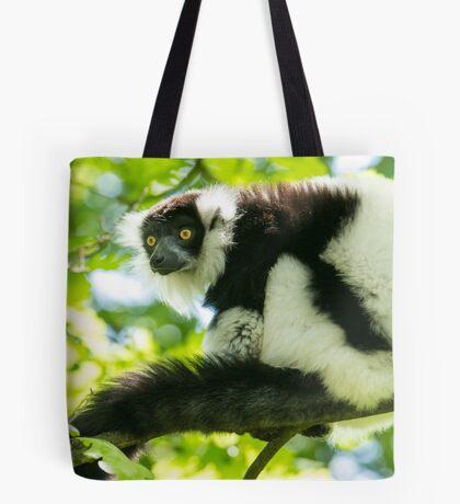 Black-and-white Ruffed Lemur Tote Bag