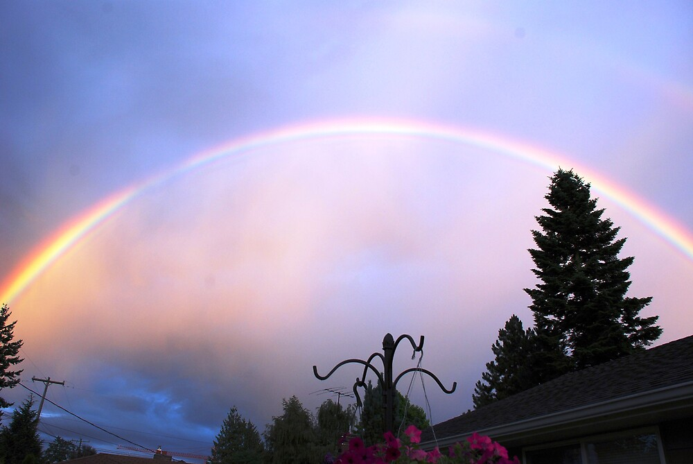 AFTERNOON RAINBOW by MsLiz