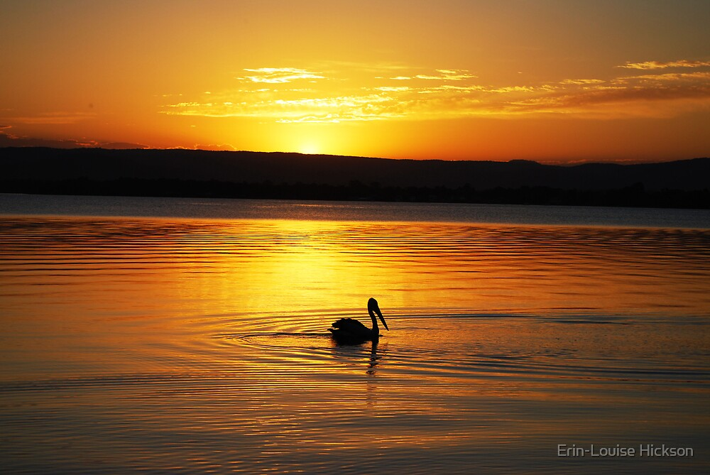 Pelican enjoying the Sunset by Erin-Louise Hickson
