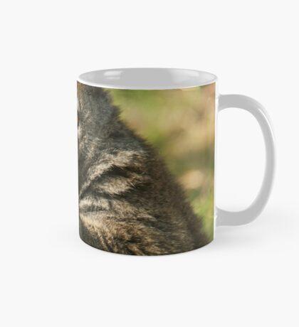 Alaotran Gentle Lemur Mug