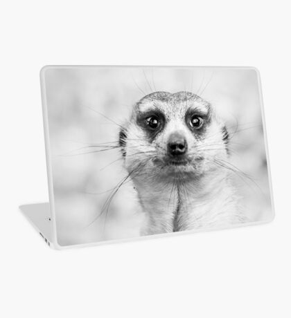 Meerkat portrait Laptop Skin