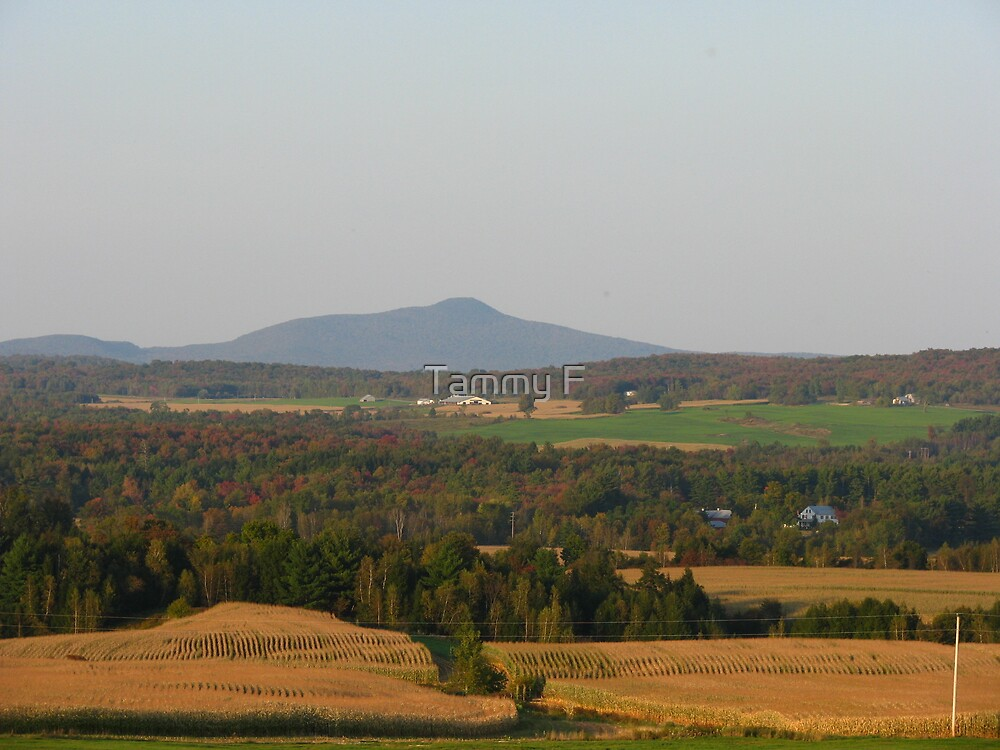 Vermont Beauty by Tammy F