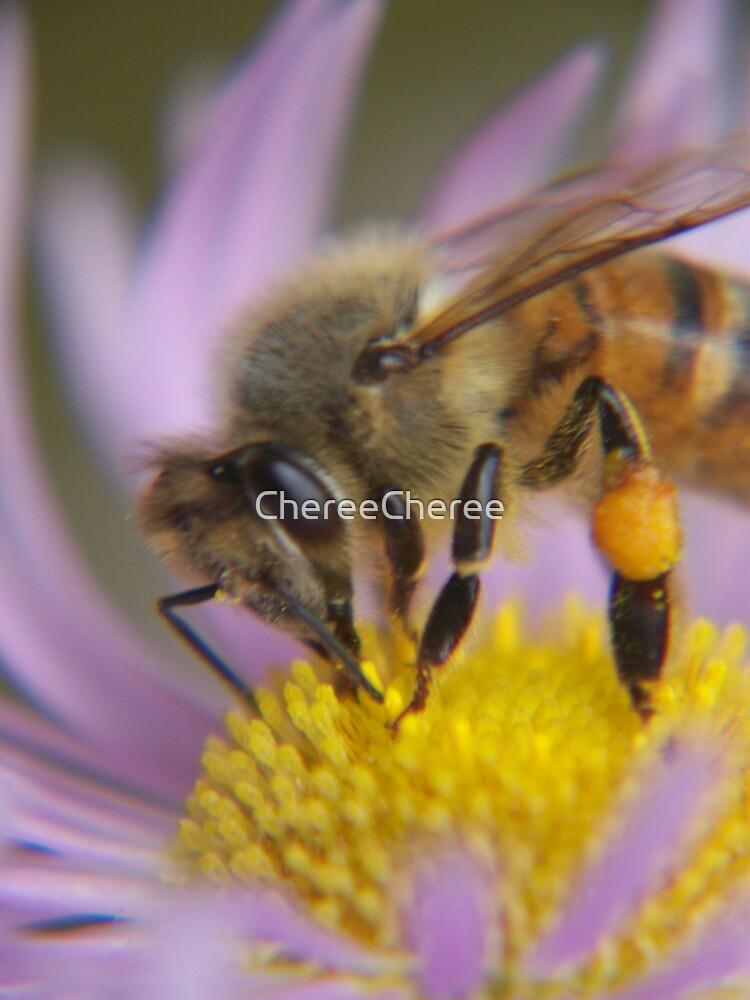 Honey Bee by ChereeCheree