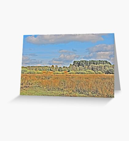 Nature for Artistic Needs Greeting Card