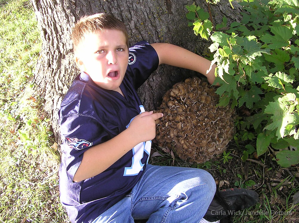 Hen of the Woods...and my son! by Carla Wick/Jandelle Petters