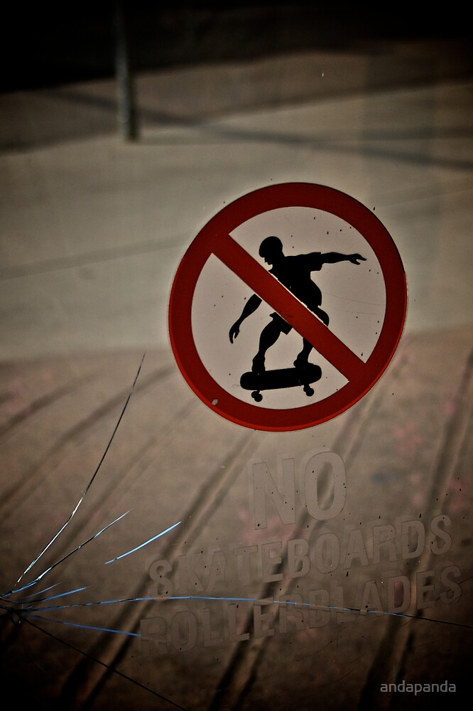 Aww No Skateboarding?!?!? by andapanda