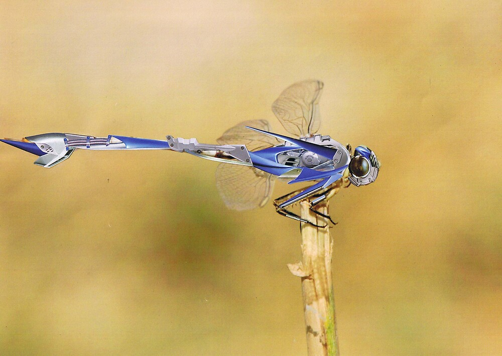 Bionic Dragonfly 2......... by atomikboy