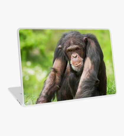 Chimpanzee Laptop Skin