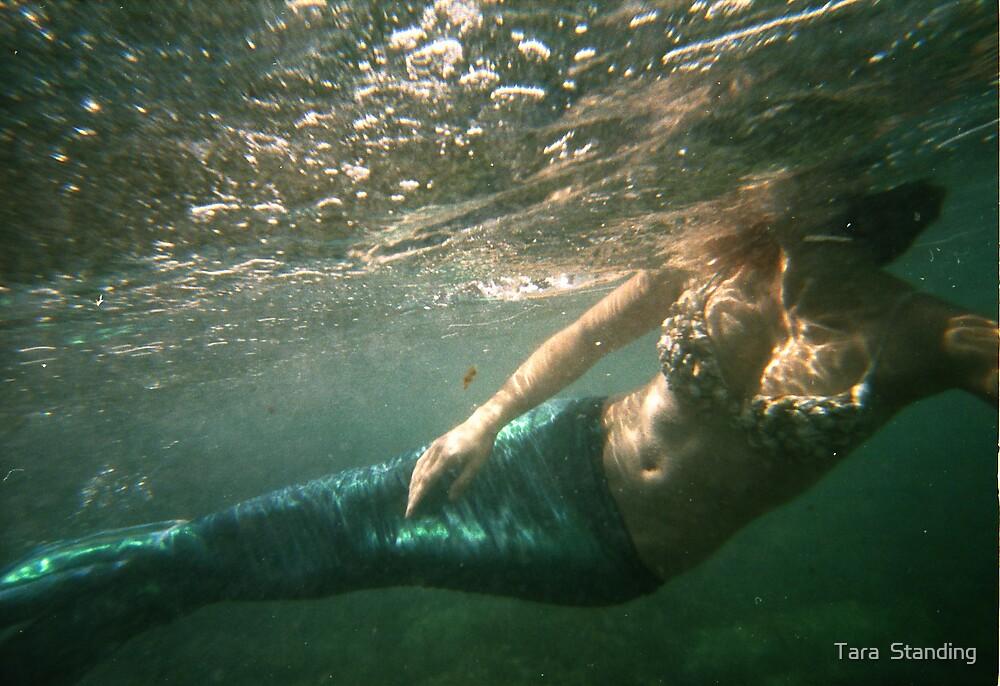 mermaids and cicadas by Tara  Standing