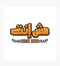 Mesh Enta Photographic Print