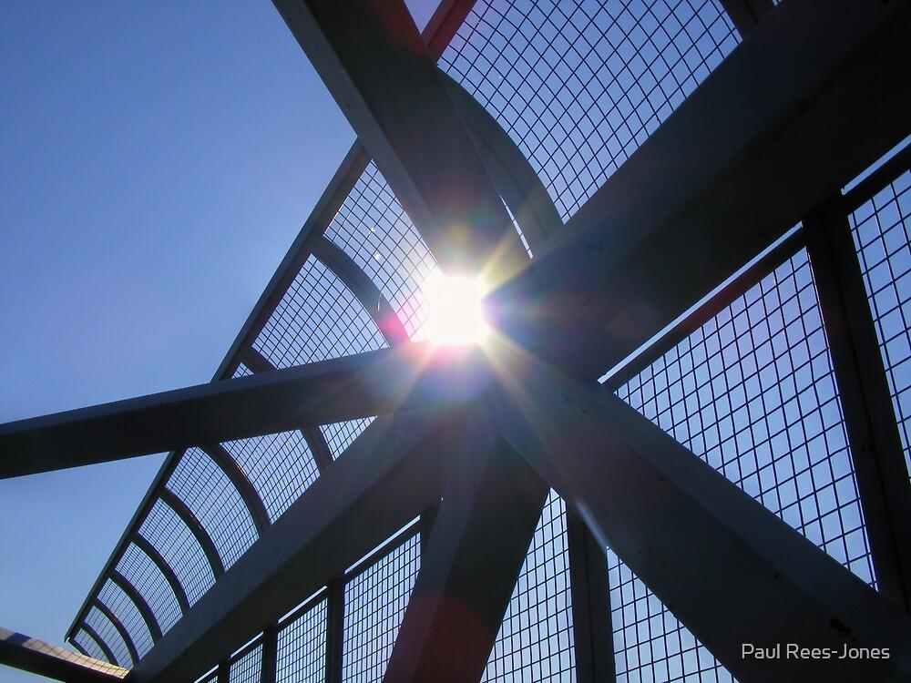 Light and Metal. by Paul Rees-Jones
