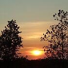 Sundown by Ana Belaj