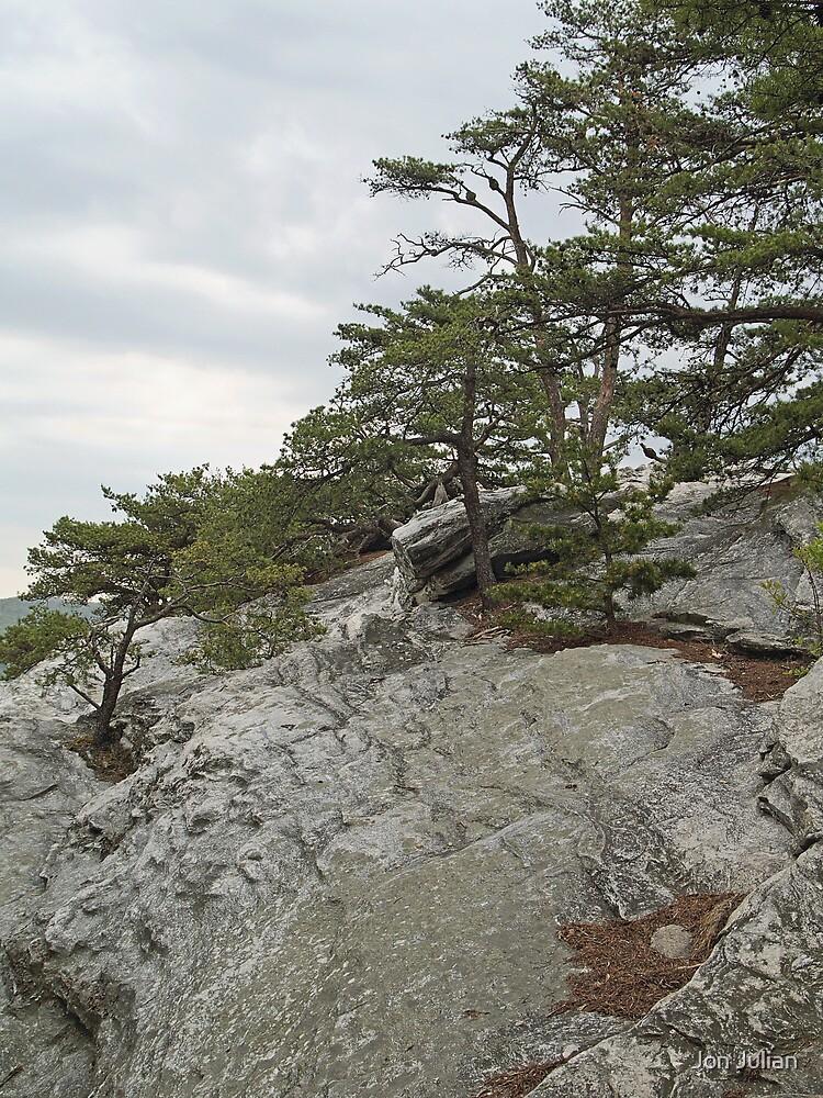 Near the Top of Hanging Rock by Jon Julian