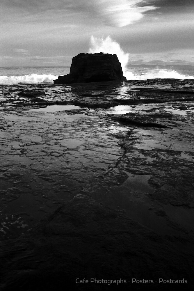 Shipstern Bluff, Tasman Peninsula by Cafe Photographs - Posters - Postcards
