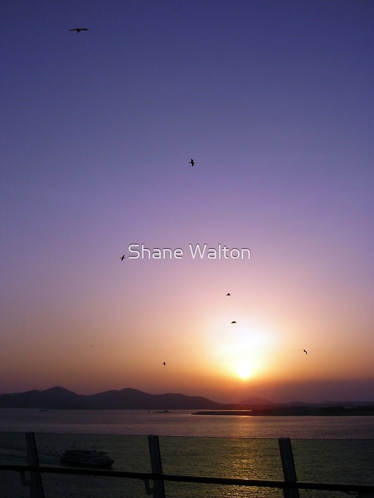 Sunset by Shane Walton