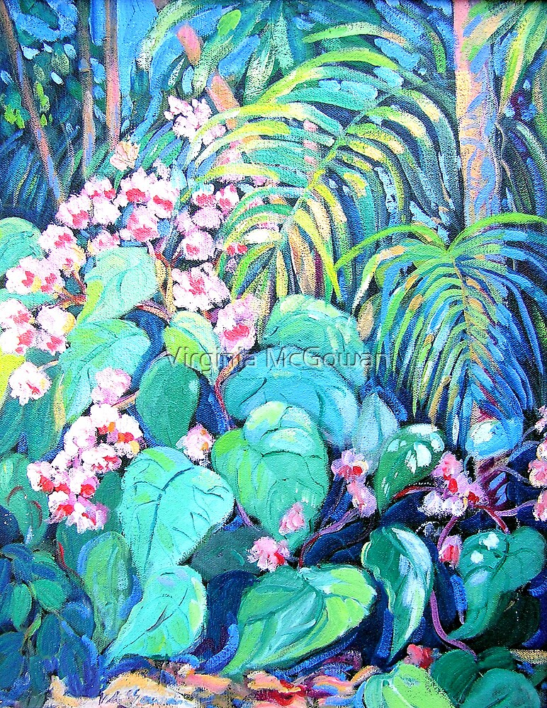 Begonias by Virginia McGowan