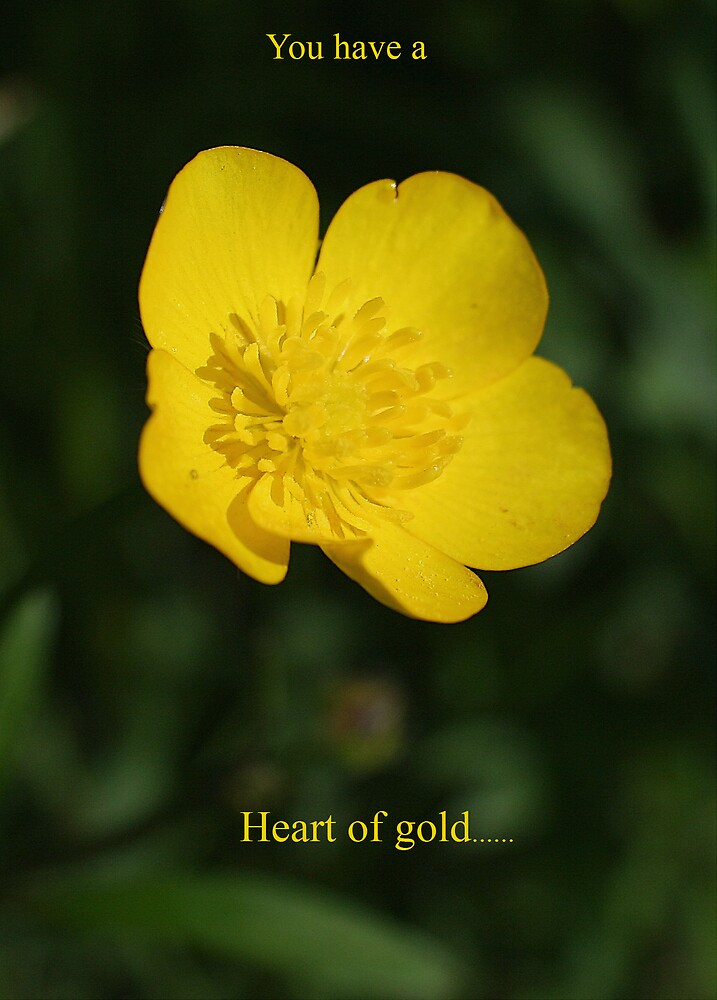 Heart of Gold by BizziLizzy