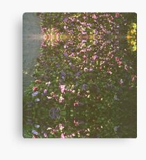 Flowers on 35mm Canvas Print
