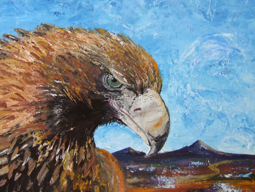 Eagle with Attitude by Sue Hodge