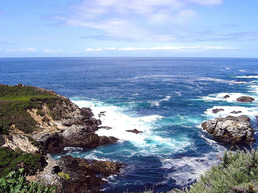 """Monterey Bay, California """"seascape"""" by Liz Wear"""