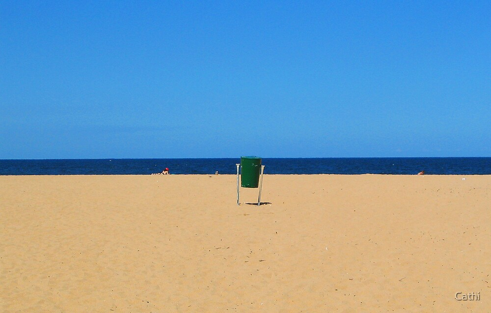 Bin on Avoca Beach by Cathi Norman
