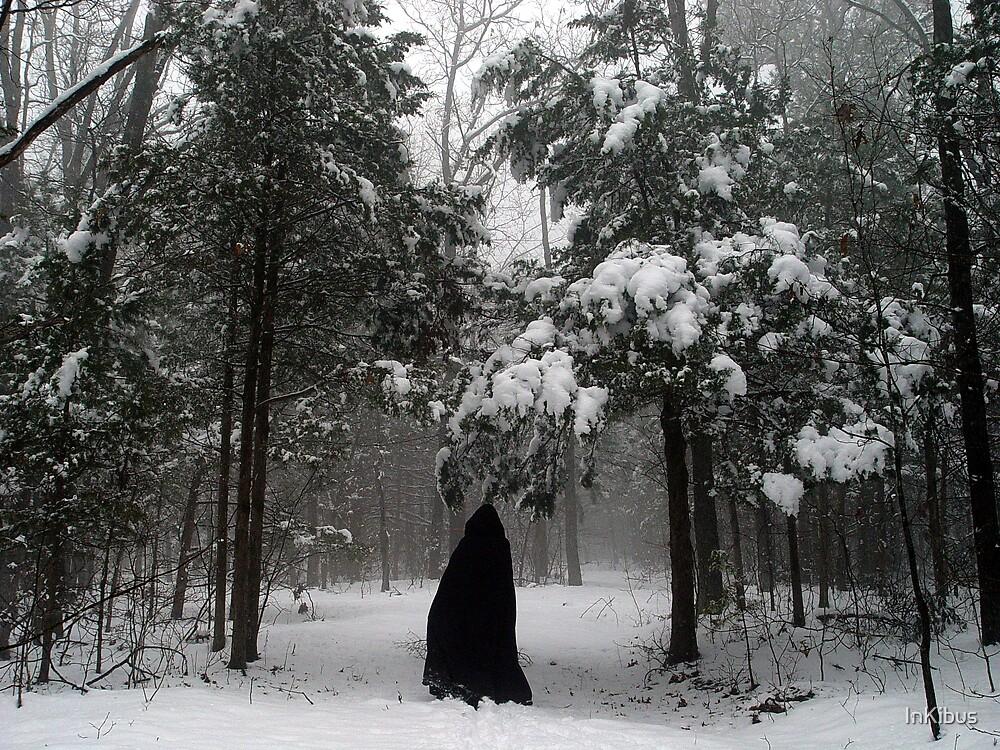 Dark Woods, Dark Traveller by InKibus