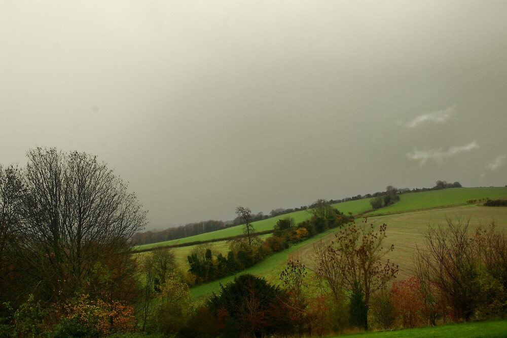 View from Northfields, Twyford by Christopher Newberry