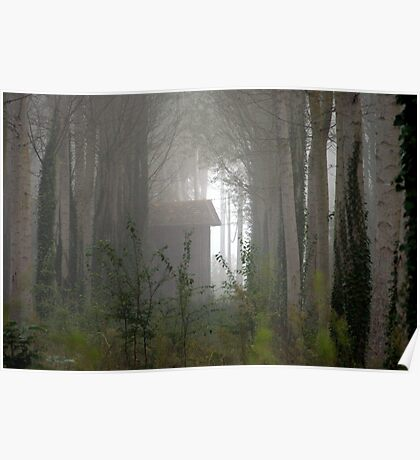 Morning mist in the woods.   Poster