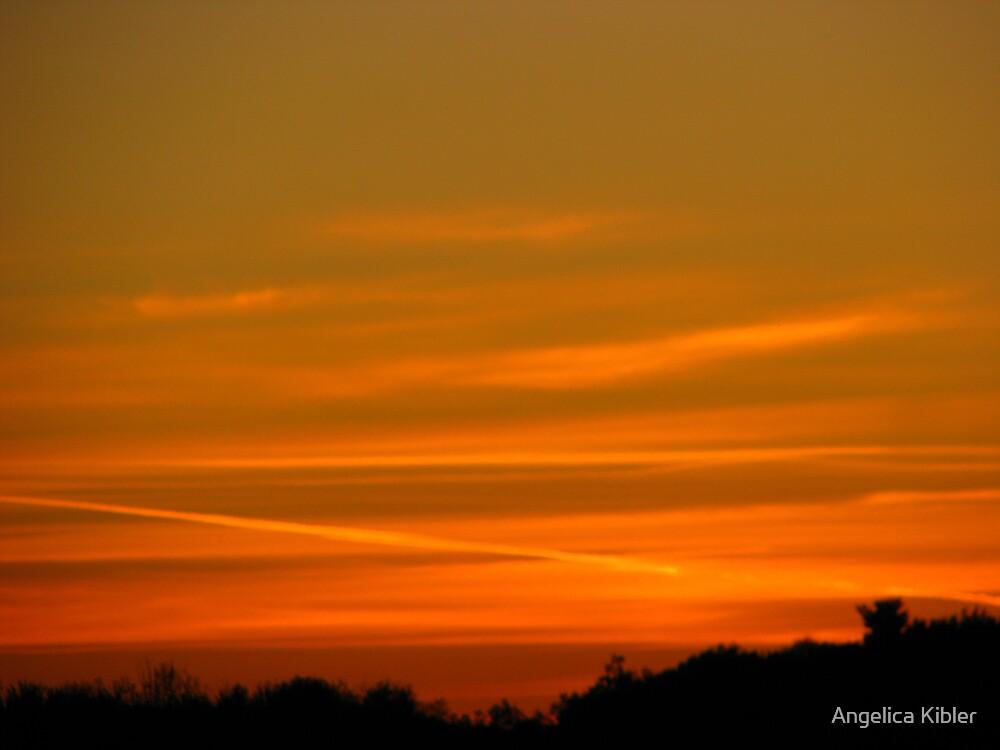 Orange Glow by Angelica Kibler