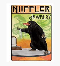 Niffler Jewelry Photographic Print