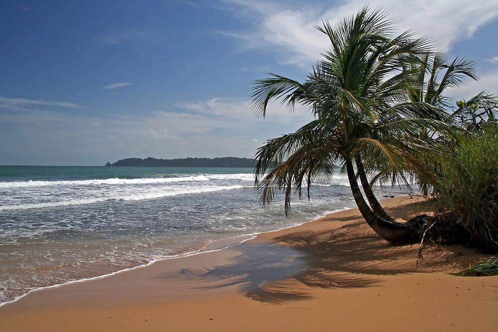 Bocas del Toro by Karen Millard