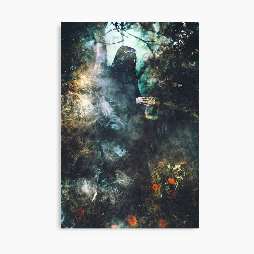 Les Premières Lueurs de l'Automne Canvas Print