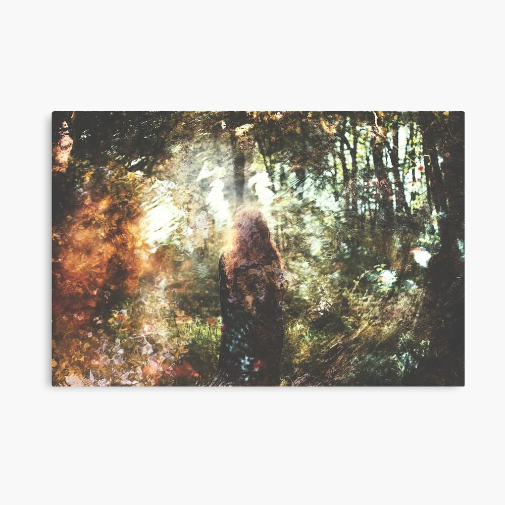 Des Contrées Verdoyantes Canvas Print