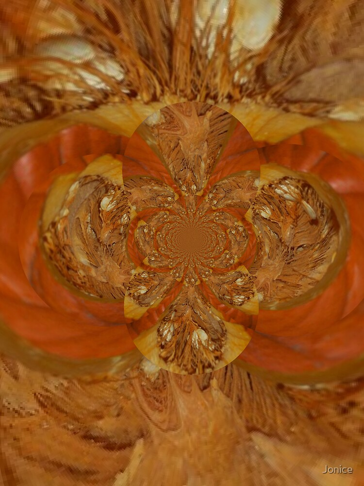 Pumpkin Insides Polar Inversion  by Jonice