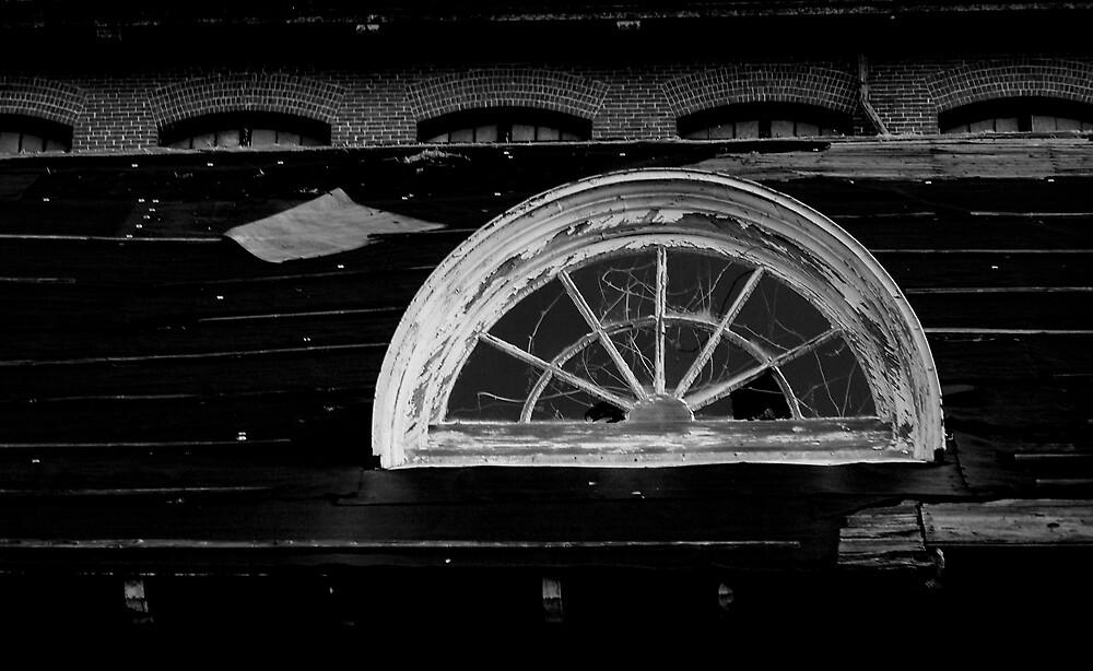 Web In the Window (B&W) by Kelsey Williams