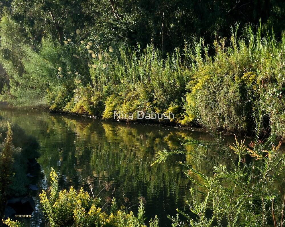 Hayarkon Park for Sir James Paul McCartney by Nira Dabush