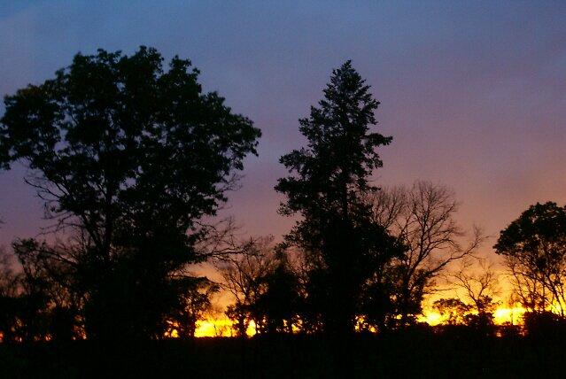 Sunset in the savanna by KristiansKreati